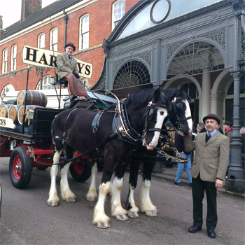 Harveys Dray & horses at the Battersea Beer Festival 2014